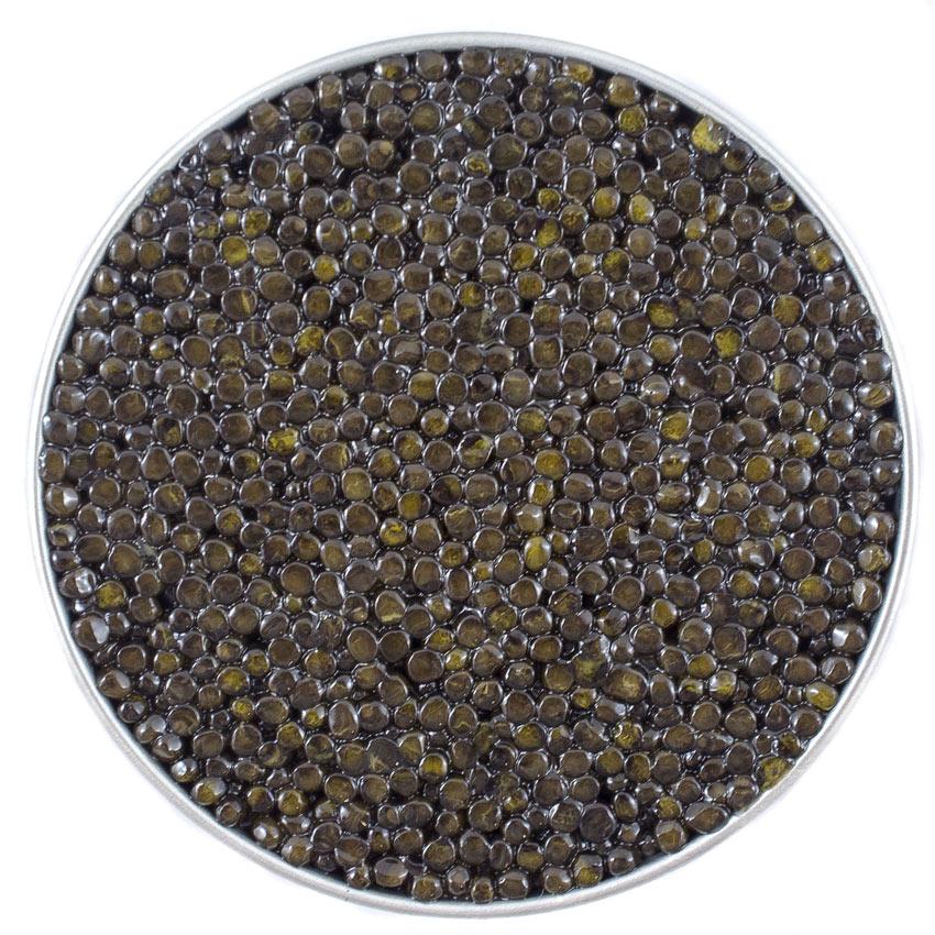 Beluga Siberian Caviar