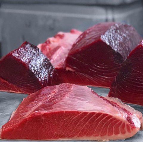 Maine Bluefin Tuna