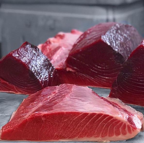 Maine Bluefin Tuna