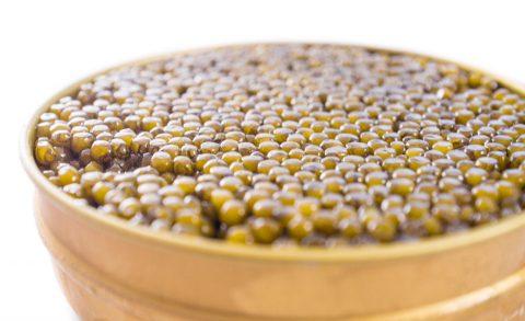 Hybrid Caviar Eggs