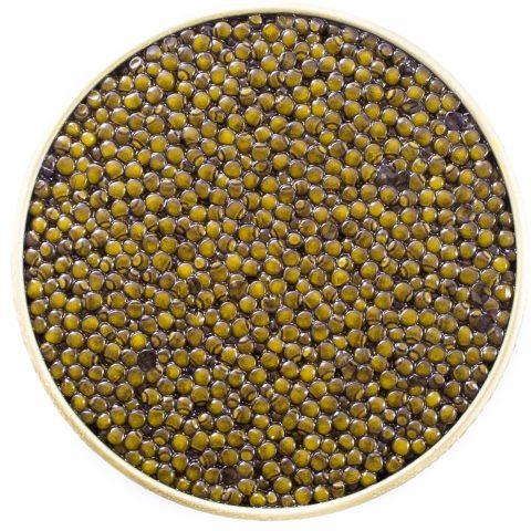 Imperial Malossol Hybrid Caviar