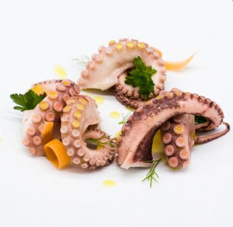 Marinated Octopus