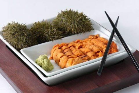 Sushi Uni Urchins