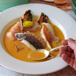 Serve with toasted slices of baguettes and sauce rouille.