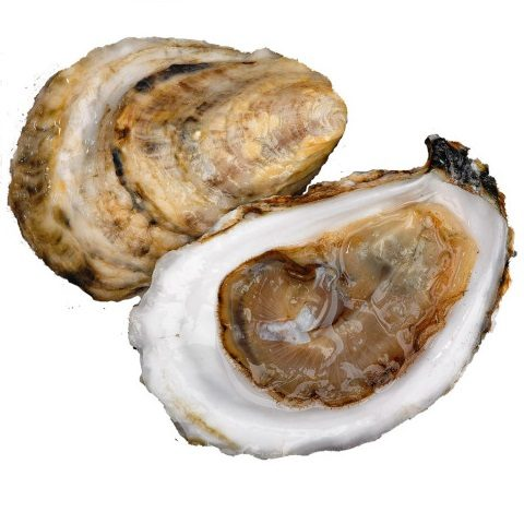 Browne's Point Oysters