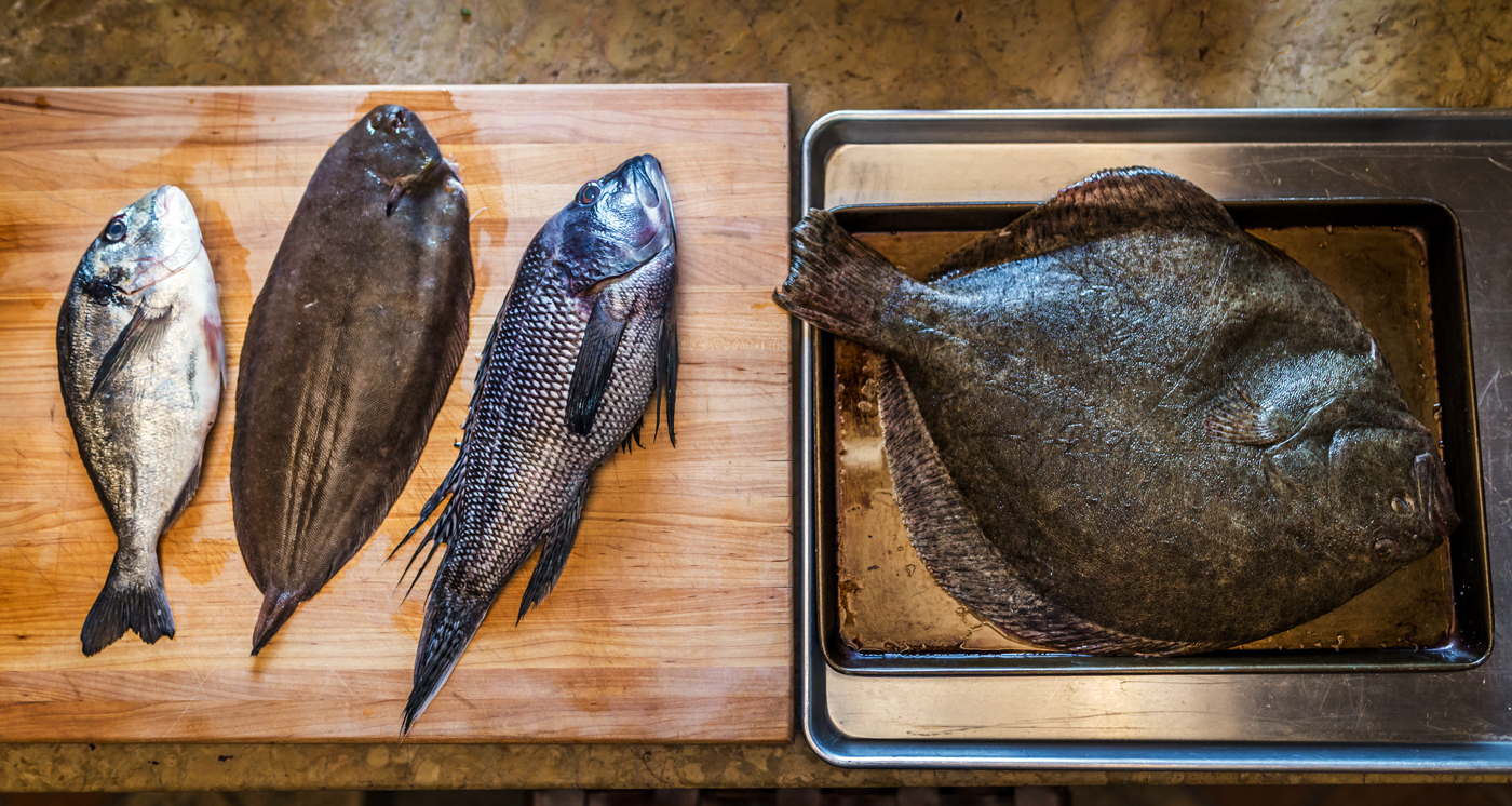 buy fresh fish online