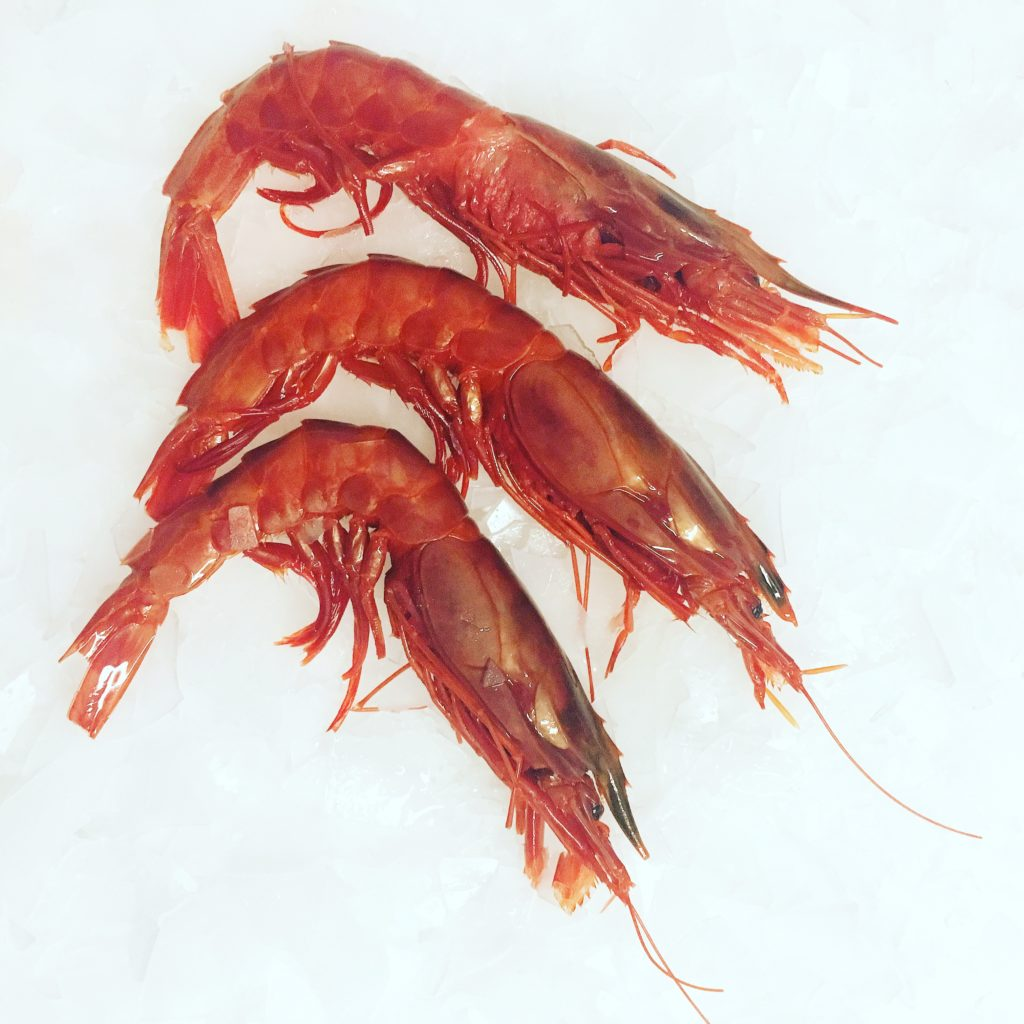 An Oxymoron is a combination of contradictory or incongruous words such as Cruel Kindness or Jumbo Shrimp Jumbo means large while Shrimp means small