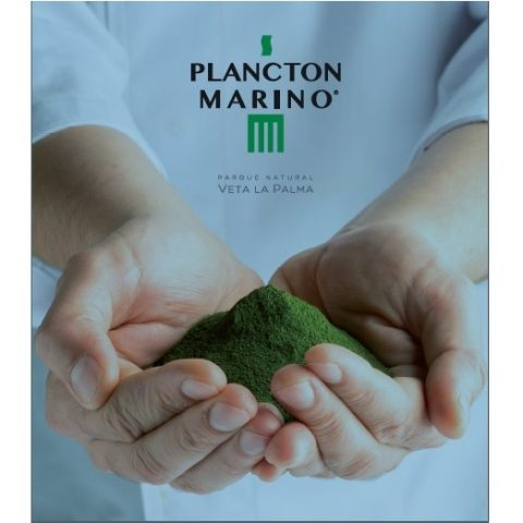 Plancton Marino Front Cover Squared