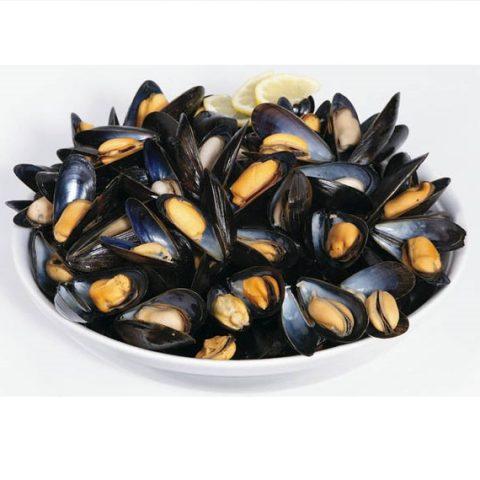 Maine Blueshell Mussels